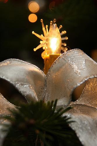 Weihnachten 2010 in Brakelsiek